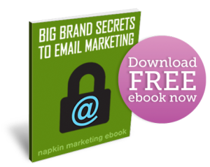 big brand secrets to email marketing ebook